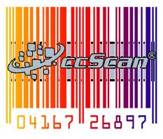 colorful barcode ccsan logo