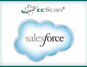 portfolio-Salesforce